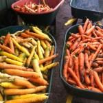 Carrots in wheelbarrows