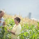 Lepp Farm 0023 Lepps looking at corn crop