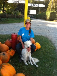 Melissa with dog, pumpkins and sign