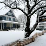Milner Farms in winterIMG_3327