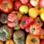 Tomatoes, heritage DSC_1731