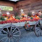 Willowview fall display cartIMG_2268