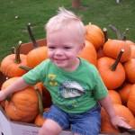 carson in pumpkin bin