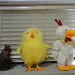 chickens, toy 1759805