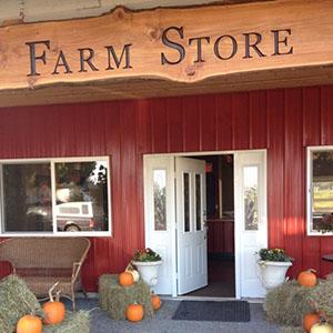 K & M Farms