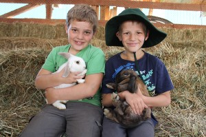 rabbits being held by boys IMG_2706