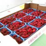 raspberries, in a flat