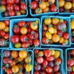 tomatoes, cherry asst colours DSC_1987