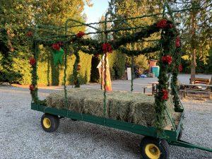 Murphy's Christmas Tree Farm & Produce